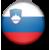 slovenski marijin trsat